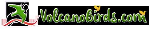 volcanobirds.com