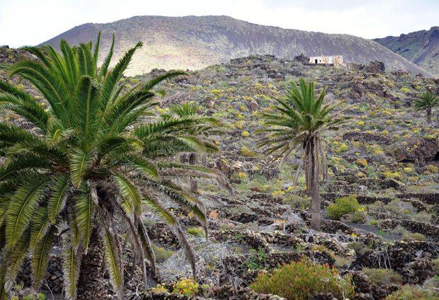 Sábado 21: Sendero Ye – Caserío de Las Quemadas (Órzola)