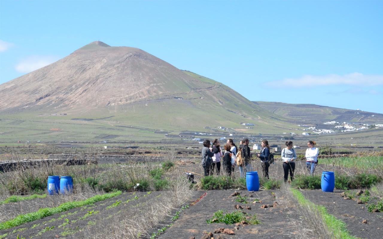 Excursión agrícola: Las siembras